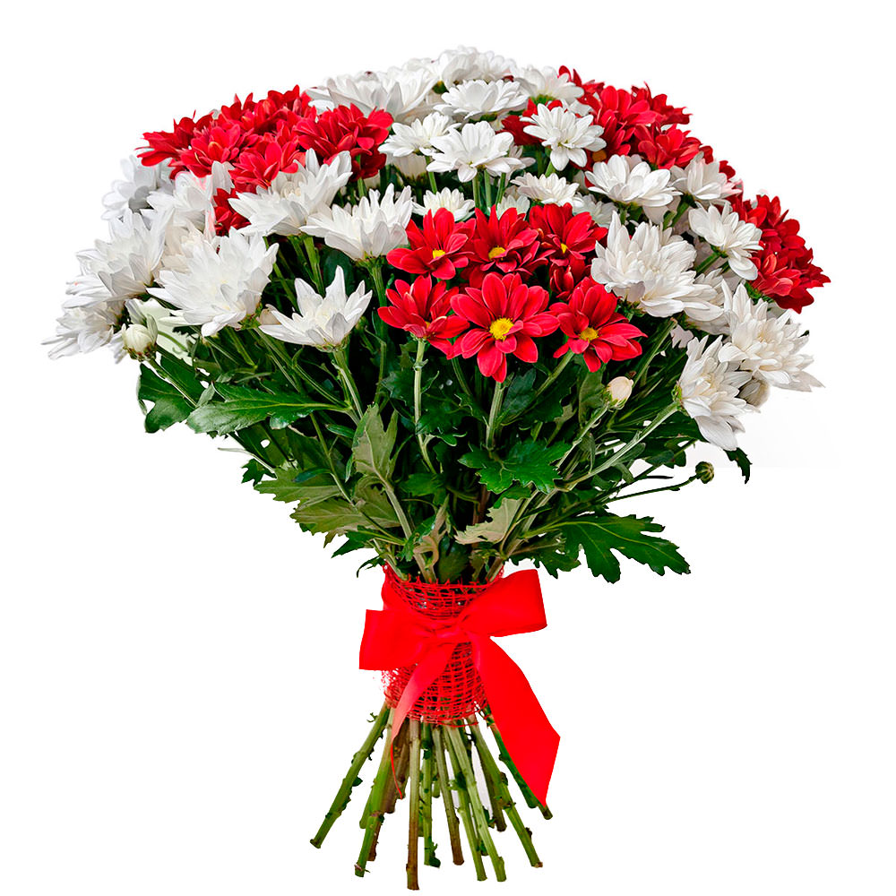 Доставка цветов в городе коряжма, цветы на заказ даугавпилс